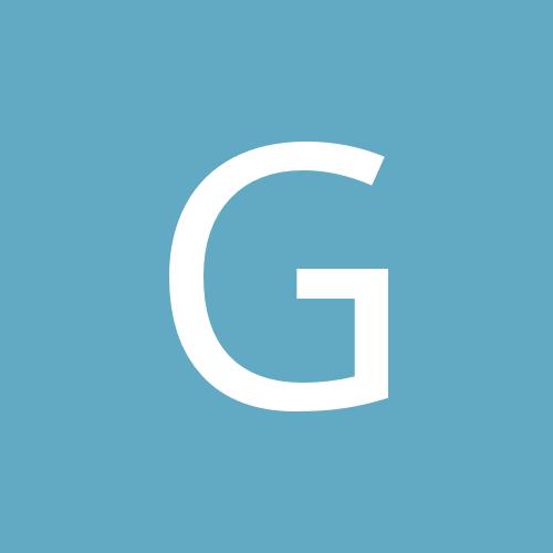 Gorodin